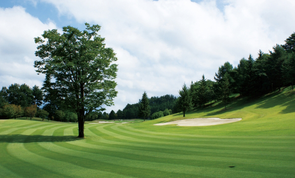 グリーンが綺麗なゴルフ場