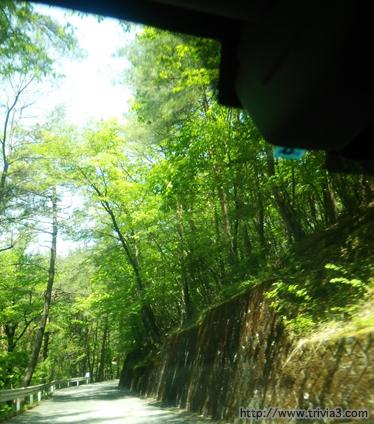 弘妙寺までの山道