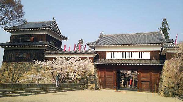上田城跡公園と桜