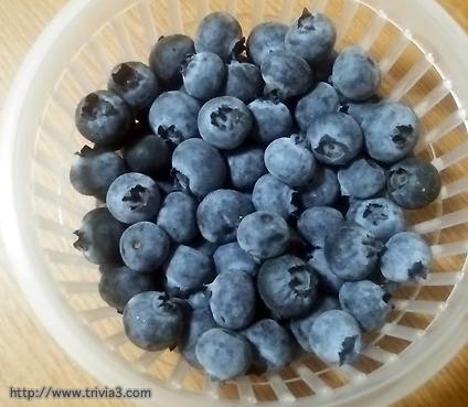 小粒な生ブルーベリー