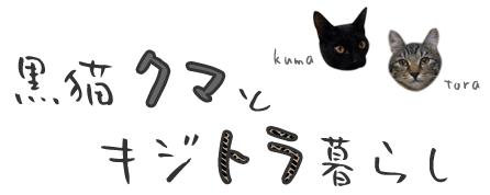 黒猫クマとキジトラ暮らし