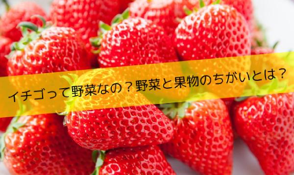 イチゴって野菜なの?