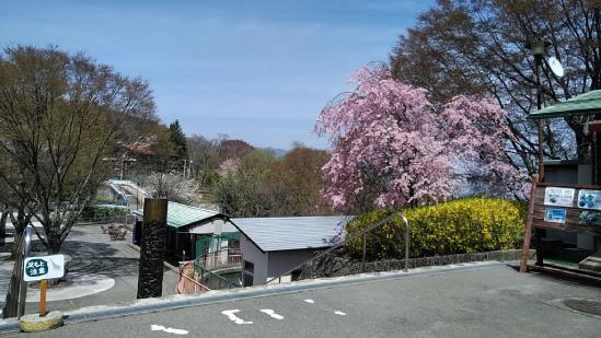 茶臼山動物園の南口入り口